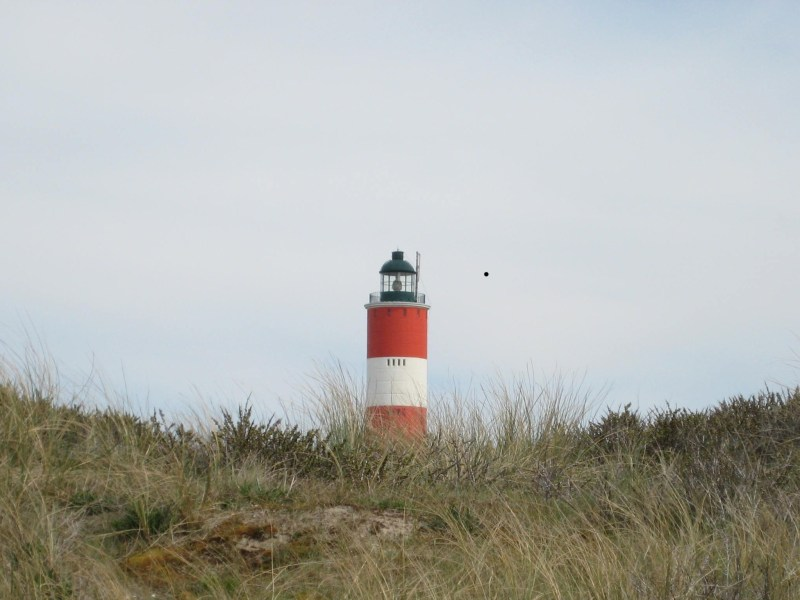 Le phare de Berck-sur-Mer (62) (c)yann.com 2008