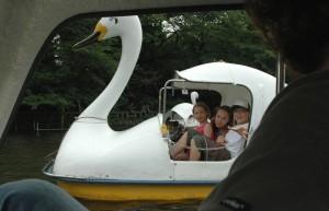 Les enfants dans le cygne à Kichijôji