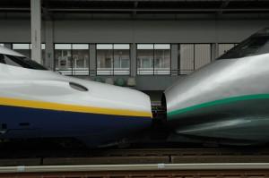 Deux motrices de générations différentes sont couplées pour former le Shinkansen Tsubasa Tokyo-Omiya