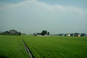Un paysage typique de campagne japonaise en Juillet, vu du train pour Kanazawa