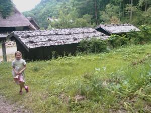 Toîts des chalets de montagne japonais à Hida-no-Sato