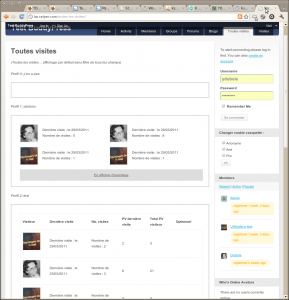 Profile Visitor Tracker screenshot - 2 - using the shortcode in BuddyPress