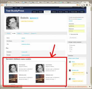 Profile Visitor Tracker screenshot-3 - using the template tag in BuddyPress